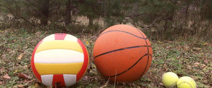 Aukok.lt kviečia aukoti Žaliosios mokyklos sporto aikštelei